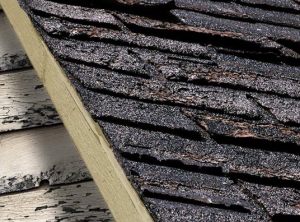 image shows damaged roof needing replacement by Patriots Roofing